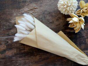 Tørrede Lagurus Blomster