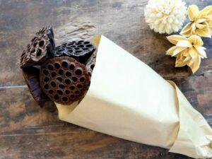 Tørrede Lotus Blomster