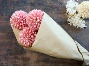 Tørrede Snebold Blomster
