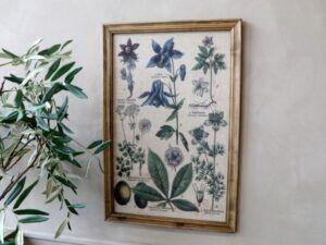 Billede m. plantemotiv & natur ramme
