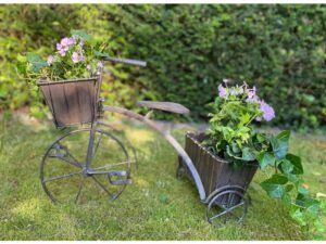La Vida Plantecykel i jern